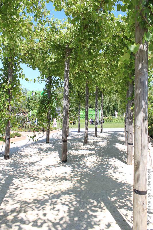 Schatten unter einer Anordnung von Bäumen, ein Boskett