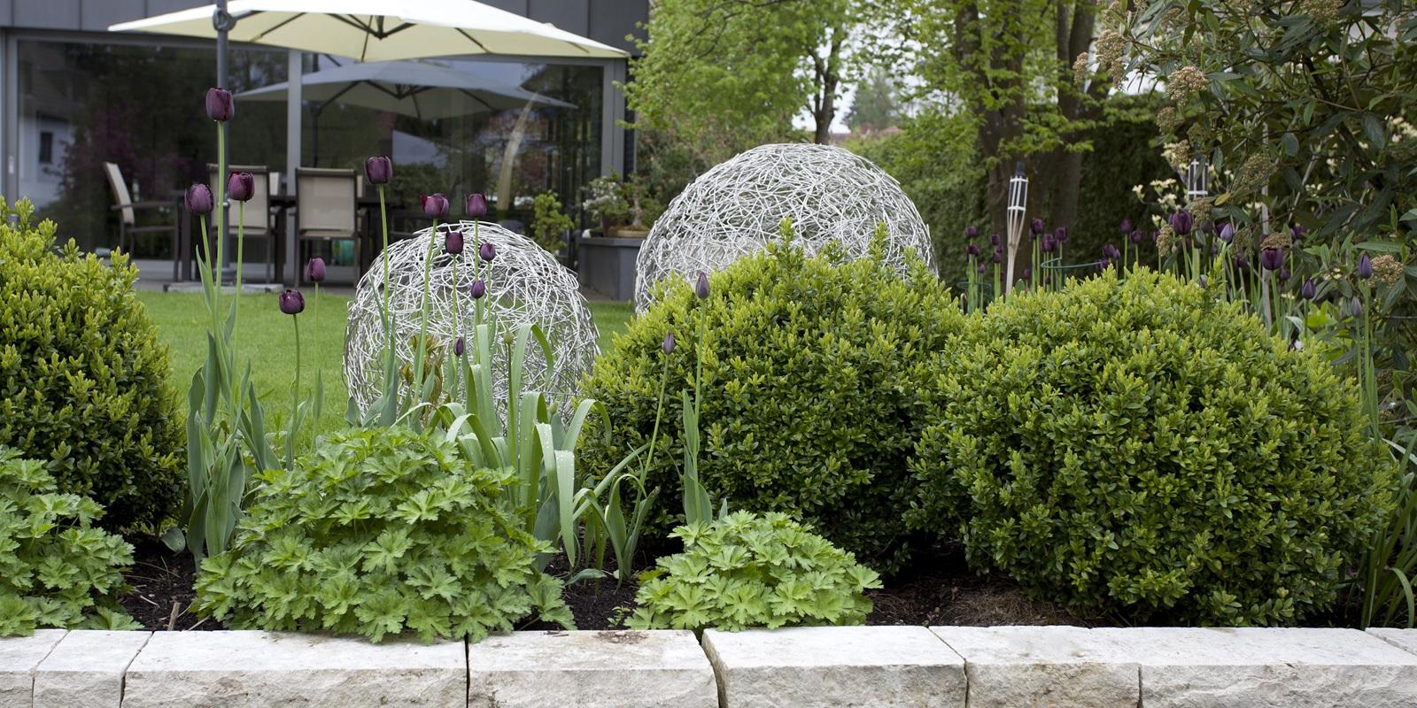 Leuchtobjekte wiederholen die Kugelform des Buchsbaums, Privatgarten Gräfelfing