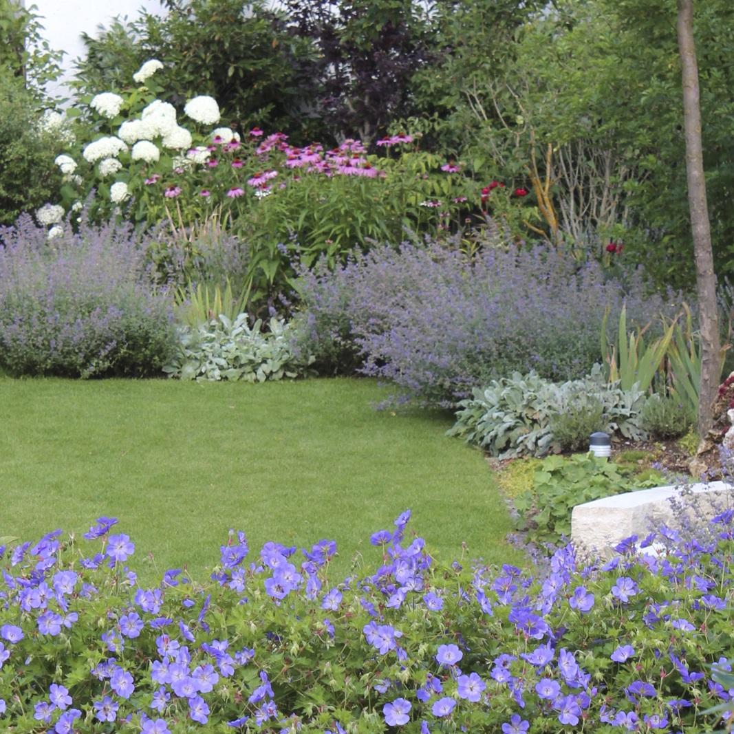 Staudenpflanzung in einem Garten in Gräfelfing