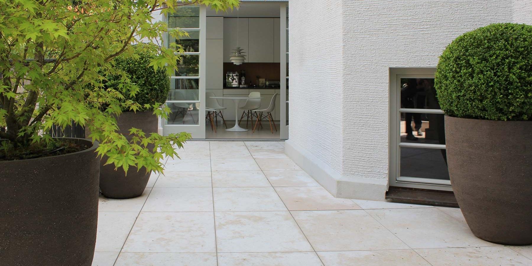 Zier-Ahorne und Buchsbaum in großen, runden Pflanzgefäßen stehen auf der Terrasse.