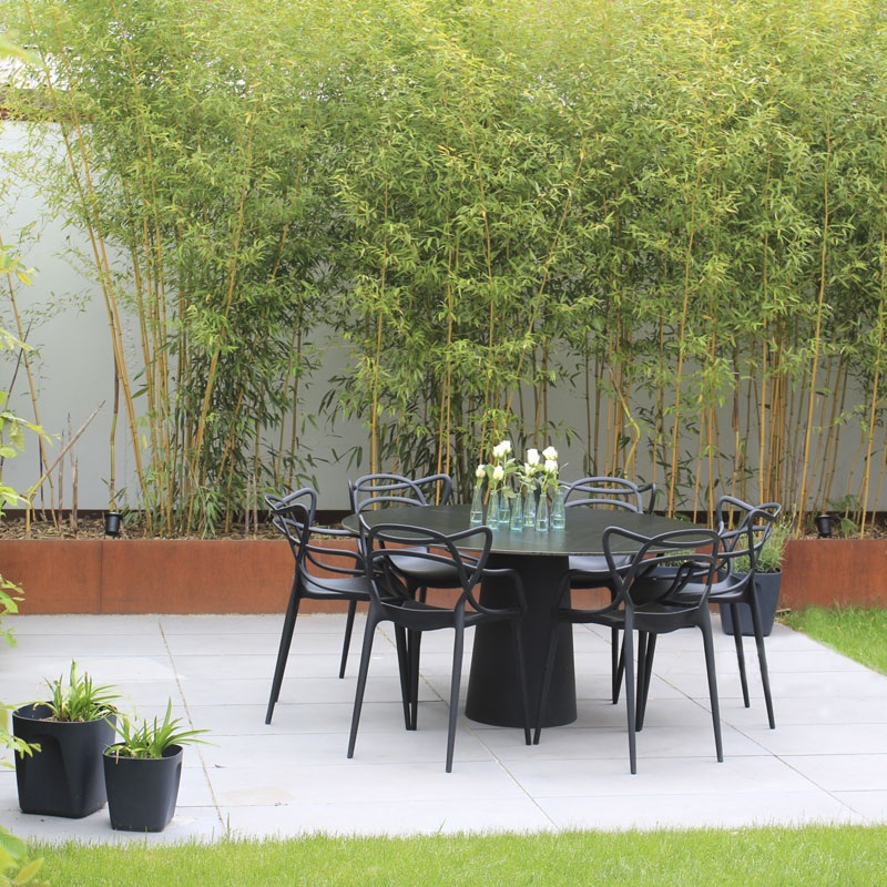 CorTen-Stahl mit Bambus bepflanzt in einem minimalistischem Garten