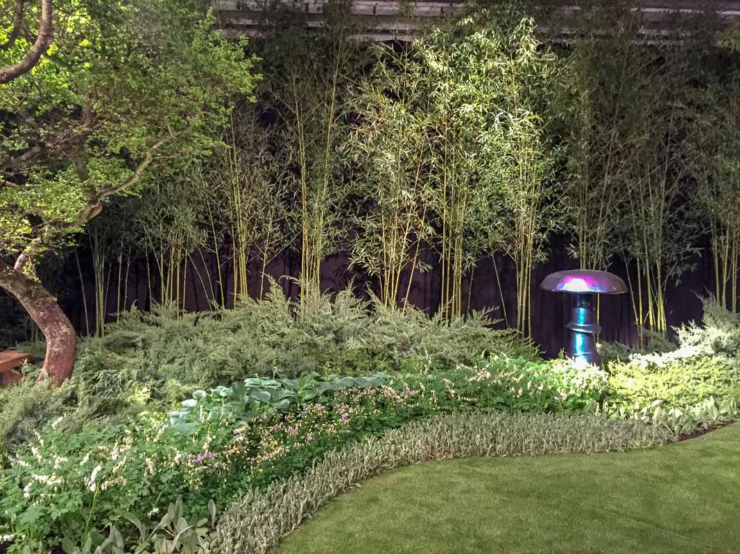 Enzo Enea ordnet die Pflanzen in Reihen an und bringt mit dem Wacholder ein immergrünes Nadelgehölz ins Spiel.