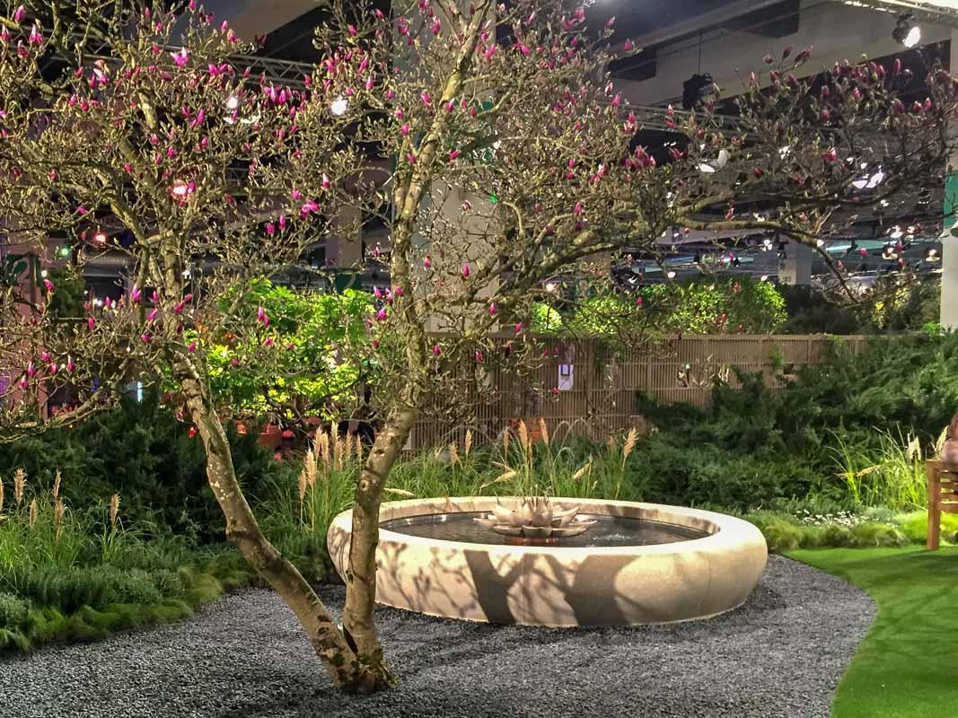 Eine malerisch gewachsene Magnolie strukturiert den Raum um ein Wasserbecken.