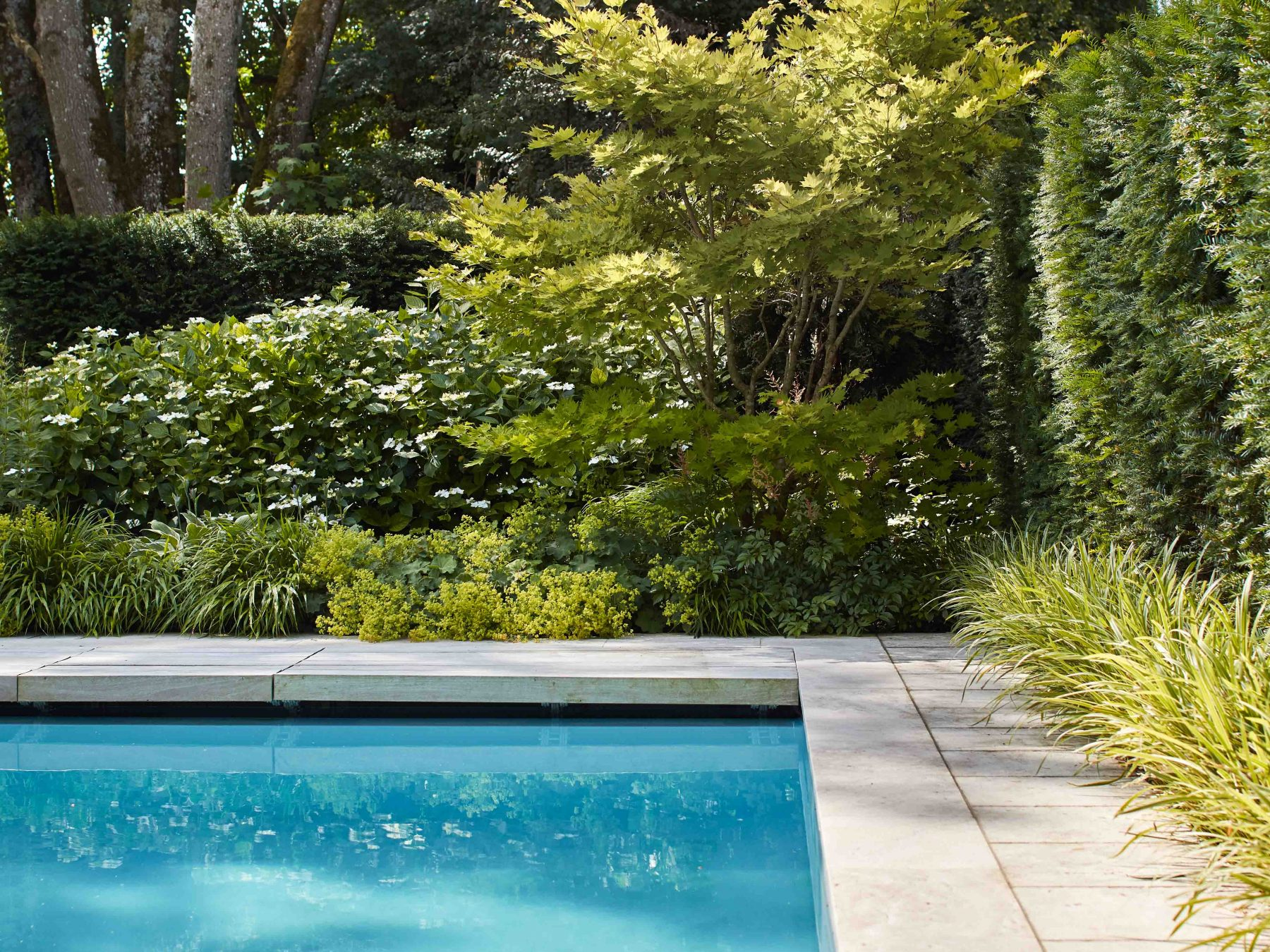 Der Pool wird von Platten aus Travertin eingefasst.