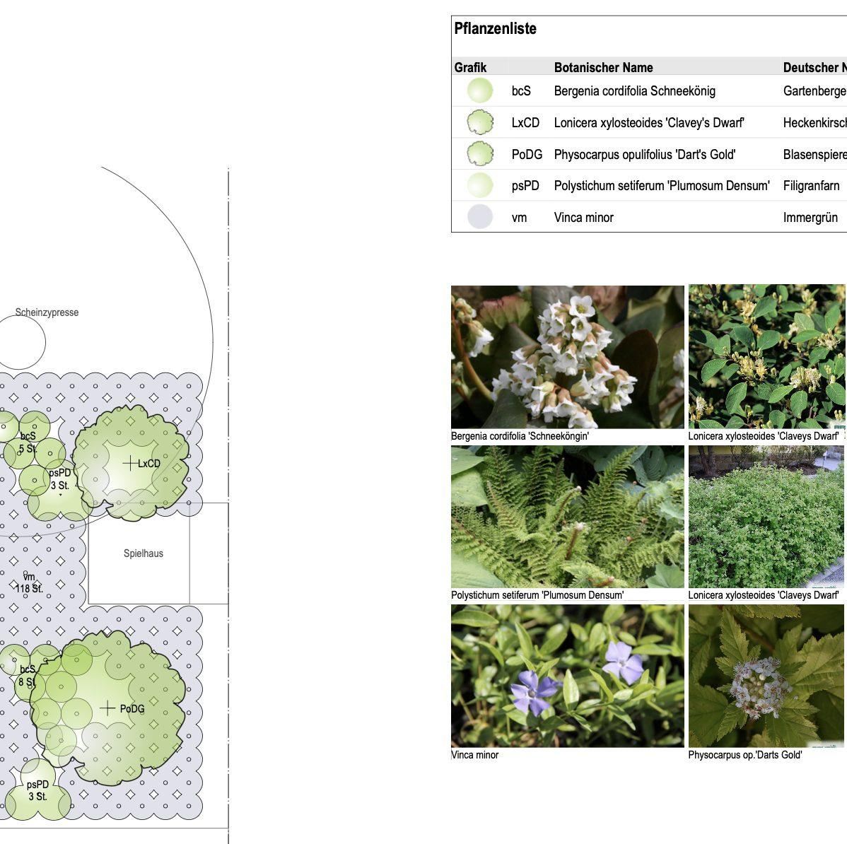 Bepflanzung im Schattengarten